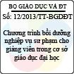 Thông tư 12/2013/TT-BGDĐT - Chương trình bồi dưỡng nghiệp vụ sư phạm cho giảng viên trong cơ sở giáo dục đại học
