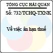 Công văn 732/2013/TCHQ-TXNK - Ân hạn thuế do Tổng cục Hải quan ban hành