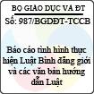 Công văn 987/2013/BGDĐT-TCCB - Báo cáo tình hình thực hiện Luật Bình đẳng giới và văn bản hướng dẫn Luật do Bộ Giáo dục và Đào tạo ban hành